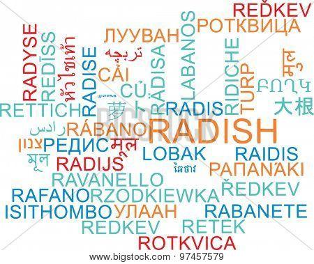 Background concept wordcloud multilanguage international many language illustration of radish