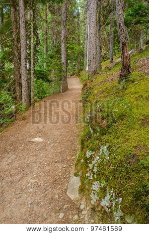 Beautiful Mountain Trail View at Lightning Lakes, British Columbia, Canada.