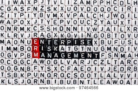 Erm Enterprise Risk Management