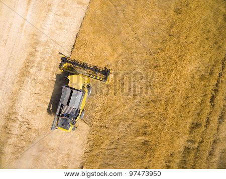 Aerial view of combine harvester on wheat field. Industrial backround on agricultural theme.