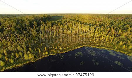 Northern Forest Lake