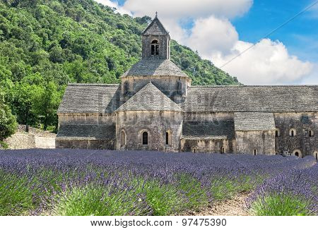 Lavender Field In Provence, France. Beautiful Landscape With Medieval Castle