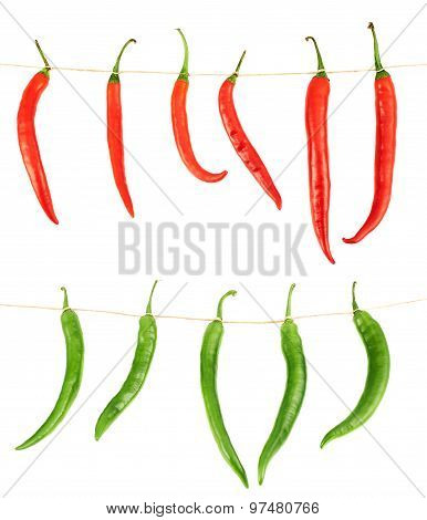 Tied chili peppers isolated