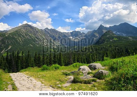 Pathway Made Of Stones Through Green Field And Pine Tree Forest With Mountains At Background