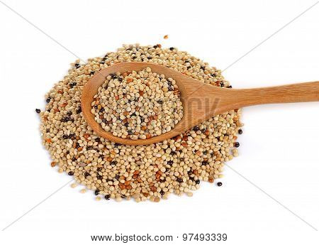 Seed Mixture In The Wood Spoon Isolated On White Background. Pet Food For Birds