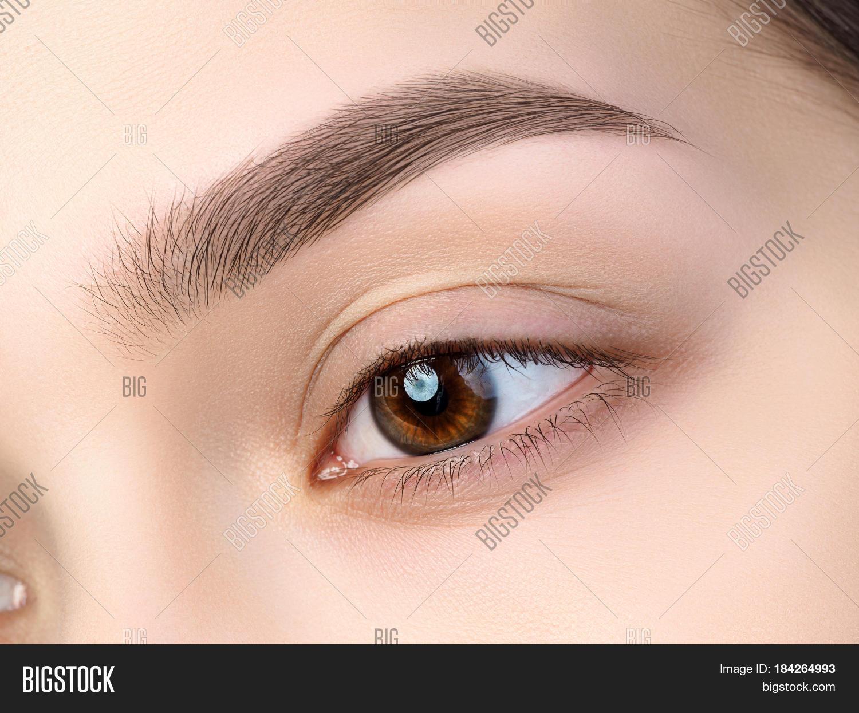 Дизайн бровей brow up