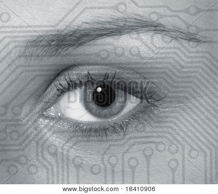 Electronic Surveyance