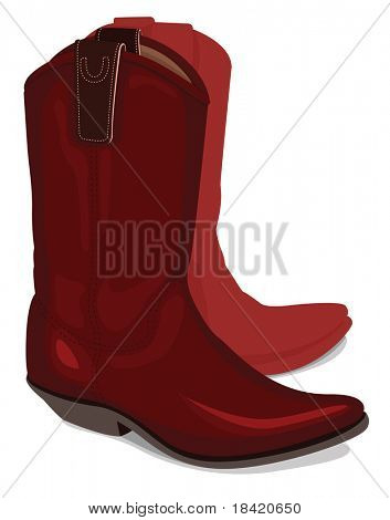 Vector illustration of cowboy boots, isolated on white background