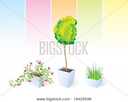 Vector illustration of three green plants