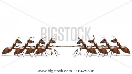 ant rope pulling business or sport competition and team work conceptual for struggle for life tug of war business rivalry or conflict challenge