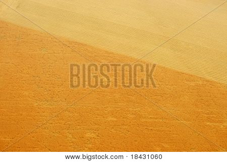 Cereal fields aerial bird view.