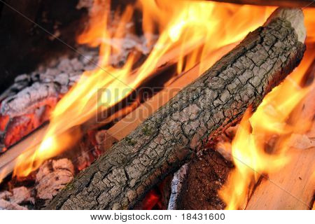 Logs in fire