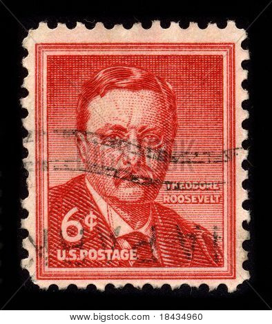 USA - CIRCA 1955: A stamp dedicated to the Theodore