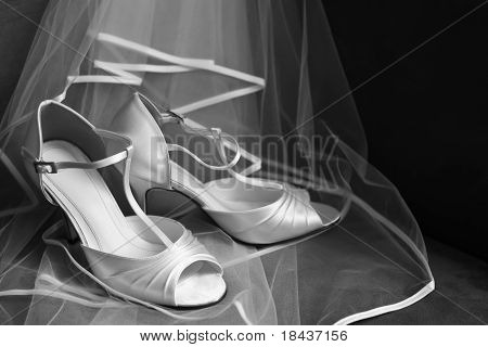 Open Toe Wedding Shoes And Mesh Veil