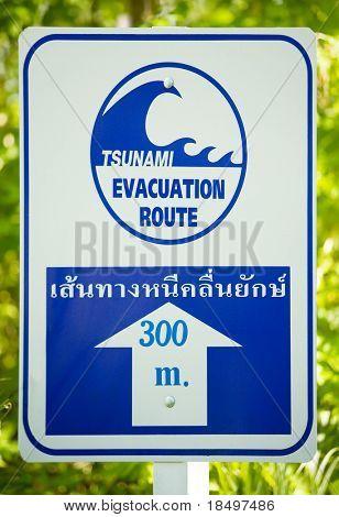 Tsunami evacuation route sign (white and blue)