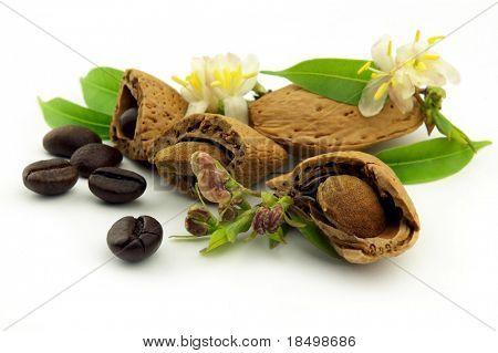 amaretto with flower