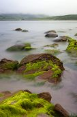 pic of irish moss  - Big boulders at Irish coast covered with green seaweed long exposure makes seawater look like mystery fog - JPG
