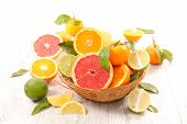assorted citrus fruit poster