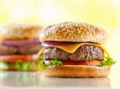 picture of beef-burger  - two cheeseburgers with selective focus on the foreground burger - JPG