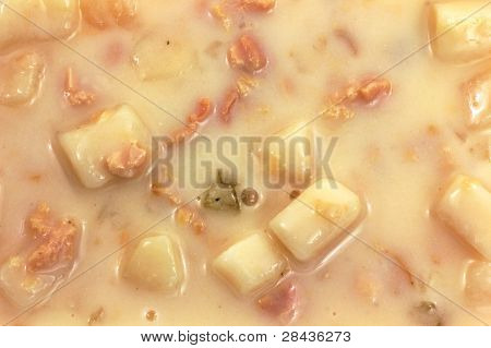 Canned Clam Chowder Close View