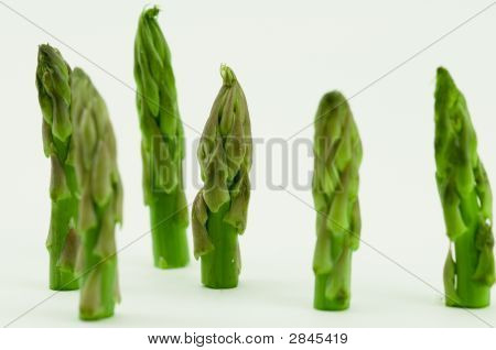 Stand Of Asparagus Tips
