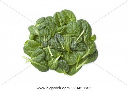 Fino Fresco Italian lettuce leaves on white background