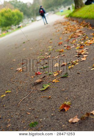 Man Walking In Autumn