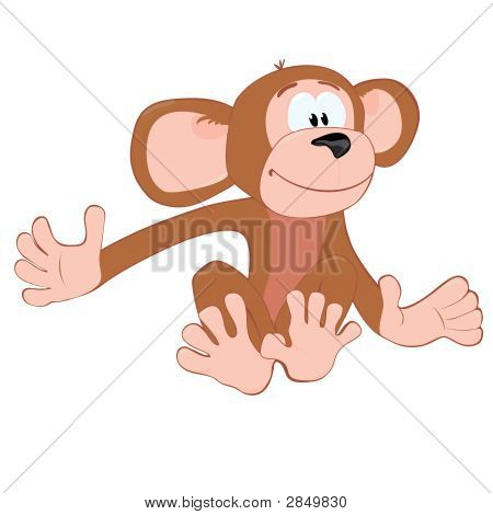 Sitting Funny Monkey