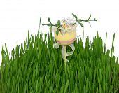Постер, плакат: яйцо с Пасхальный кролик в трава свежая