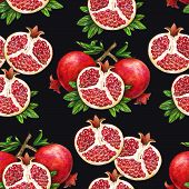 Ripe Fruit Of Red Pomegranate On A Branch Is Isolated On A Black Background. Watercolor Illustration poster