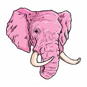 Elephant Head Sketches In Pink Color And Lines. Simple Elephants On White Background. Cute Elephant. poster