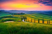 Amazing Summer Colorful Sunset Landscape In Tuscany. Spectacular Flowery Grain Fields And Winding Ro poster