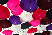 Ceiling With Colorful Umbrellas.ceiling With Colorful Umbrellas poster