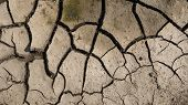Cracked Soil Ground. Cracked Soil Texture Or Background. Natural Abstraction. Ground Background. Cra poster