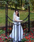 stock photo of arch foot  - Bride stands behind a black metal arch and gate - JPG