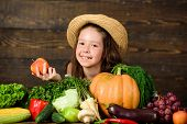 Traditional Autumnal Fest. Farm Activities For Kids. Girl Kid Farm Market With Fall Harvest. Child C poster