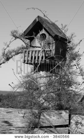 Birdhouse Bw