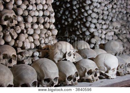 Bone Entrance