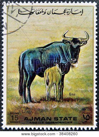MANAMA AJMAN - CIRCA 1967: a stamp printed in Ajman shows Gnu circa 1967