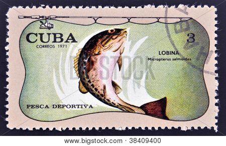 CUBA - CIRCA 1971