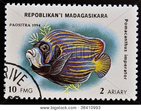 MADAGASCAR - CIRCA 1994: stamp printed in Madagascar dedicated to fish shows pomacanthus imperator c