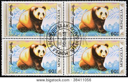 MONGOLIA - CIRCA 1990: stamp printed in Mongolia shows a giant panda circa 1990