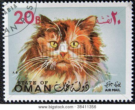 OMAN - CIRCA 1971: stamp printed in State of Oman shows Turkish Angora cat, circa 1971