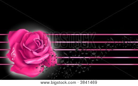 Pink Rose And Notes