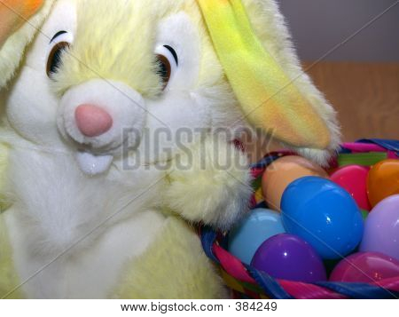 Easter Bunny And Eggs Wide Angle