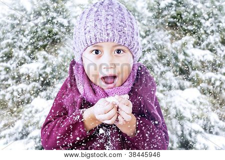 Excited Boy Playing Snow Under Pine Tree