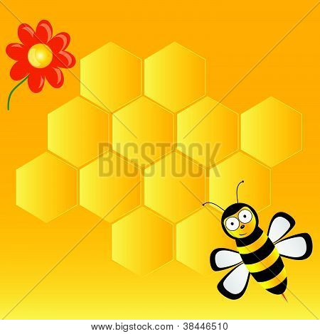 Cute Bee With Honeycombs Vector Illustration