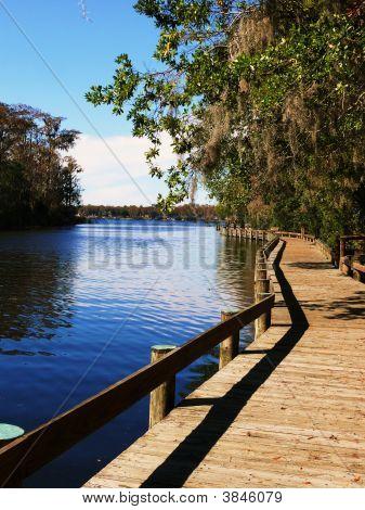 Boardwalk On Lake Tarpon