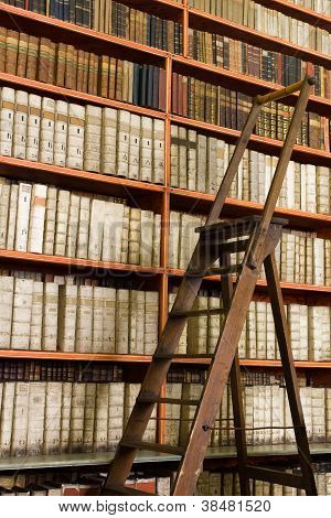 Library Full Of Aged Books And Ladder