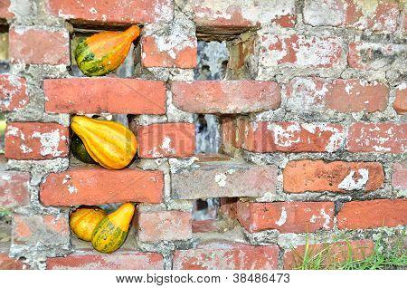 Gourds decorate brick fence